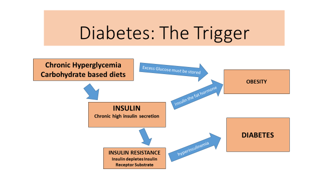 diabetes the trigger